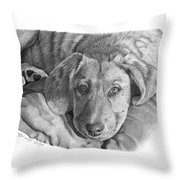 033 - Molly Throw Pillow