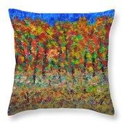 035 Fall Colors Throw Pillow