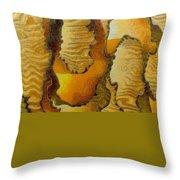 0386 Throw Pillow