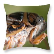 04 New Forest Cicada  Throw Pillow