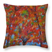 052 Abstract Thought Throw Pillow