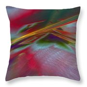 0538 Throw Pillow