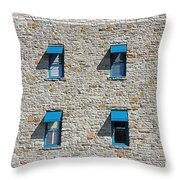 0547 Windows Throw Pillow