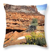 0712 Guardian Of Canyonland Throw Pillow