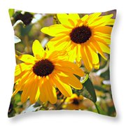 080 Throw Pillow by Marty Koch