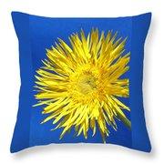 0812-002 Throw Pillow