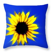 083 Throw Pillow by Marty Koch