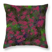 0901 Abstract Thought Throw Pillow