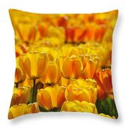 090416p026 Throw Pillow