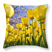 090416p030 Throw Pillow