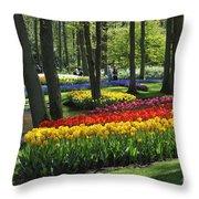 090416p038 Throw Pillow