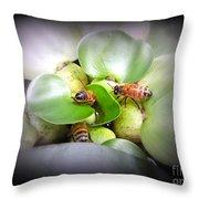 1 . 2 . 3 . Honeybees Throw Pillow