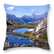 Artist Ridge Tarns Throw Pillow