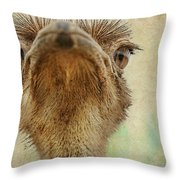 Ostrich Closeup Throw Pillow