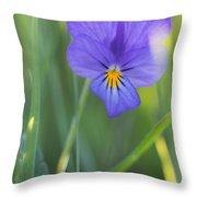 01 Heart's Ease Wild Viola Throw Pillow