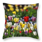 090416p033 Throw Pillow
