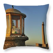 110714p203 Throw Pillow