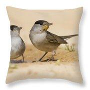 2 Male Eurasian Blackcap Throw Pillow