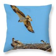 3 Ospreys At The Nest Throw Pillow