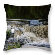 1 500th Of A Second Throw Pillow