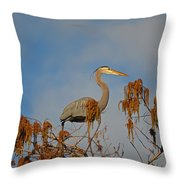 7- Great Blue Heron Throw Pillow