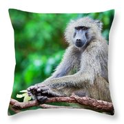 A Baboon In African Bush Throw Pillow