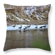 A Chilly Swim Throw Pillow