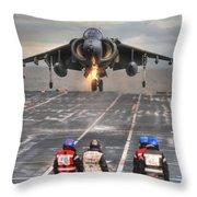 A Gr9 Harrier  Throw Pillow