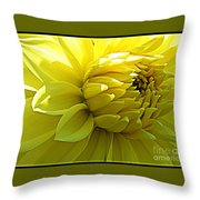 Golden Dahlia Throw Pillow