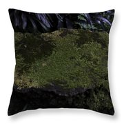 A Moss Covered Stone Inside The National Orchid Garden In Singapore Throw Pillow