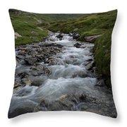 A Mountain Stream In Vanoise National Throw Pillow