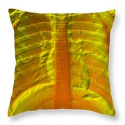 A Normal Chest X-ray Throw Pillow