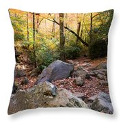 A Palette Of Colors Throw Pillow by Parker Cunningham