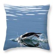 A Penguin Swims Through The Clear Throw Pillow