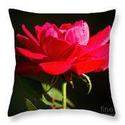 A Red Rose Throw Pillow