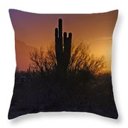 A Sonoran Morning  Throw Pillow