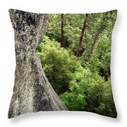 A Young Boy Climbs In Yosemite, June Throw Pillow