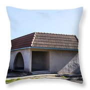 Abandoned 5 Throw Pillow