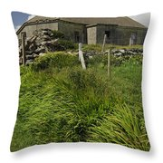 Abandoned Farm In Ireland Throw Pillow