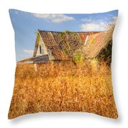Abandoned Farmhouse In Field 3 Throw Pillow