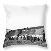Abandoned Sugarmill Throw Pillow