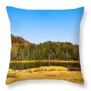 Adirondack Color Vi Throw Pillow