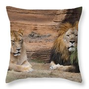 African Lion Couple Throw Pillow