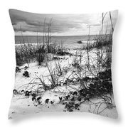 After The Storm Bw Throw Pillow