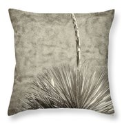 Agave And Adobe Throw Pillow