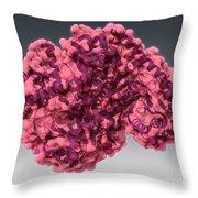 Alanine Transaminase, Molecular Model Throw Pillow