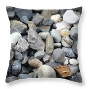 Alaskan Sand Throw Pillow