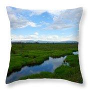 Alaskan Tundra Throw Pillow