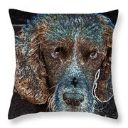 Old Blue Eyes Throw Pillow