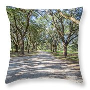 Lowcountry Allee Of Oaks Throw Pillow
